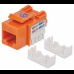 Intellinet 210775 keystone module