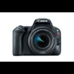 Canon EOS Rebel SL2 + EF-S 18-55mm f/4-5.6 SLR Camera Kit 24.2MP CMOS 6000 x 4000pixels Black