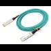Cisco SFP-25G-AOC3M cable infiniBanc 3 m SFP28 Verde