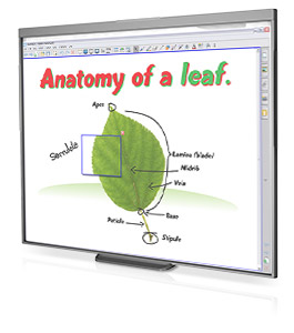 "Smart SB480 77"" Touchscreen White interactive whiteboard"
